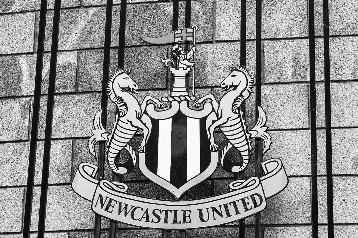 Newcastle fue vendido en el día de ayer a capitales arabes y te contamos por qué no podría pasar algo parecido en Alemania.